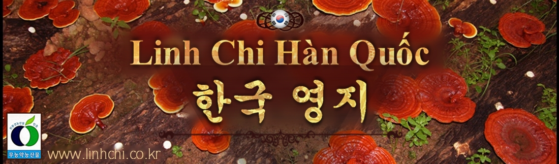 www.linhchi.co.kr - Nấm Linh Chi Hàn Quốc